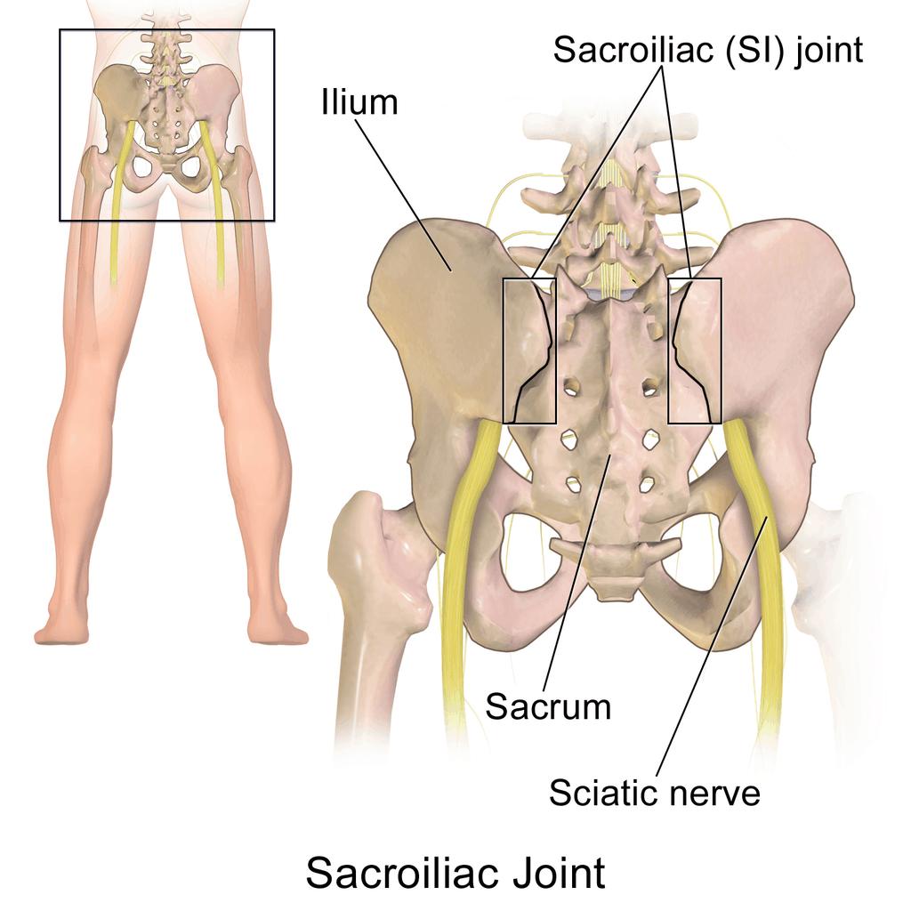 prostatite e nervo sciatica therapy